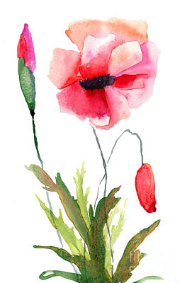 Colorful Poppy Flowers Art Print