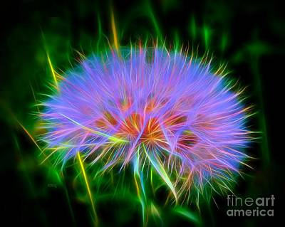 Colorful Puffball Art Print