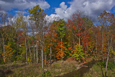 Photograph - Colorful Ravine A Wider Angle by Bill Woodstock