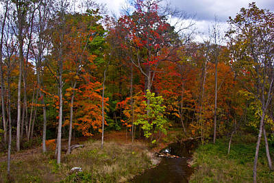 Photograph - Colorful Ravine With Sky by Bill Woodstock