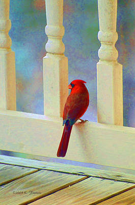 Colorful Redbird Art Print