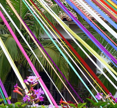 Photograph - Colorful Ribbons And Palms by Jeff Lowe