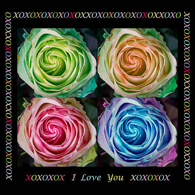 Photograph - Colorful Rose Spirals With Love by James BO  Insogna