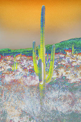 Photograph - Colorful Saguaro by Jeanne Hoadley