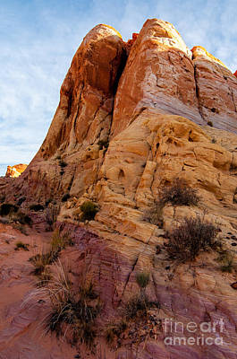 Outdoor Graphic Tees - Colorful Sandstone Fin - Valley of Fire - Nevada by Gary Whitton