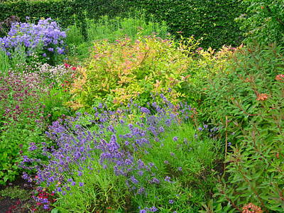 Photograph - Colorful Scottish Garden by Denise Mazzocco