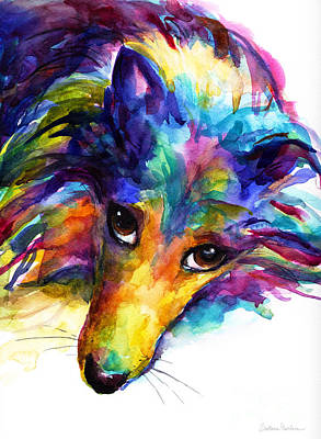 Watercolor Pet Portraits Painting - Colorful Sheltie Dog Portrait by Svetlana Novikova
