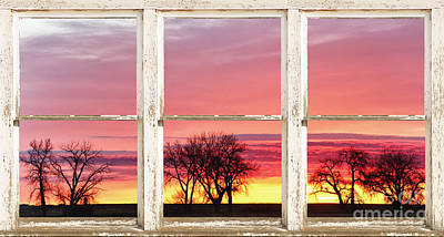 Gold Photograph - Colorful Tree Lined Horizon White Barn Picture Window Frame  by James BO  Insogna