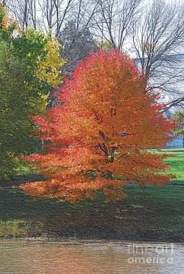 Digital Art - Colorful Tree by Mark McReynolds
