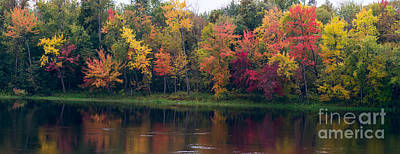 Photograph - Colorful Trees Along The River by Les Palenik
