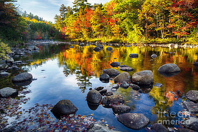 Rocky Creek Photograph - Colorful Trees Along The Swift River by George Oze