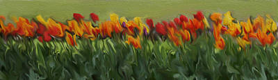 Colorful Tulips Art Print by Art Spectrum