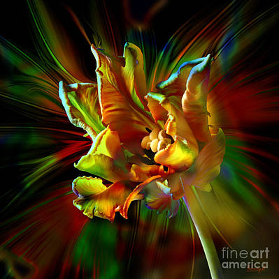 Digital Art - Colorfull Tulip by Johnny Hildingsson