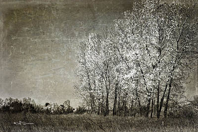 Colorless Fall Art Print by Jeff Swanson