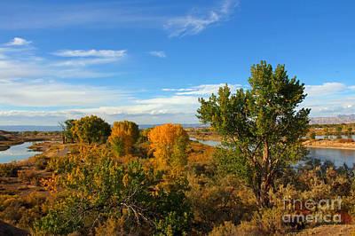 Colors Along The Colorado Art Print by Bob Hislop
