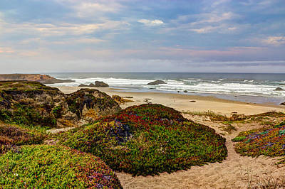 Photograph - Colors And Texures Of The California Coast by Heidi Smith