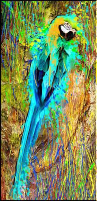 Macaw Digital Art - Colors Ara by Daniel Janda