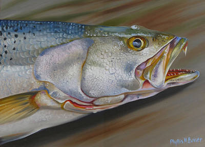 Colors Of A Trout Original