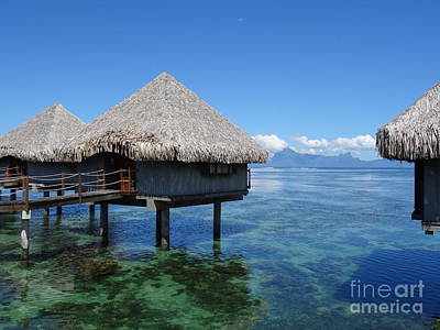 Photograph - Colors Of Bora Bora by Rachel Gagne