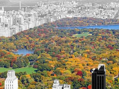 Rockefeller Plaza Photograph - Colors Of Central Park by Dan Sproul