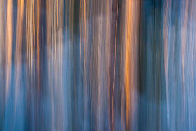 Blur Photograph - Colors Of Dusk by Davorin Mance