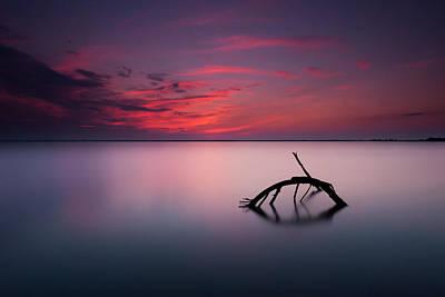 Zen Balance Photograph - Colors Of Evening by Micha? Olech