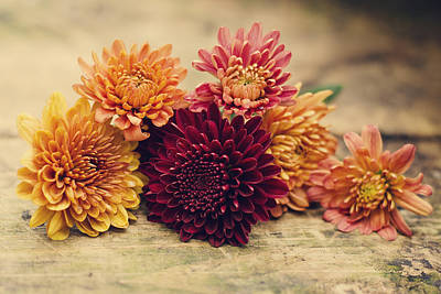 Photograph - Colors Of Fall by Heather Applegate