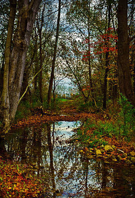 Photograph - Colors Of Fall by Kristi Swift