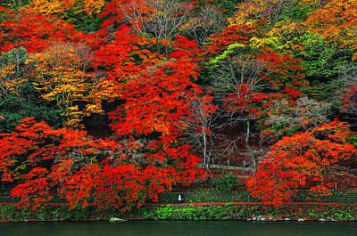 Colors Of Fall Art Print by Midori Chan