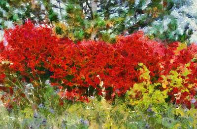 Claude Mixed Media - Colors Of Life by Dan Sproul