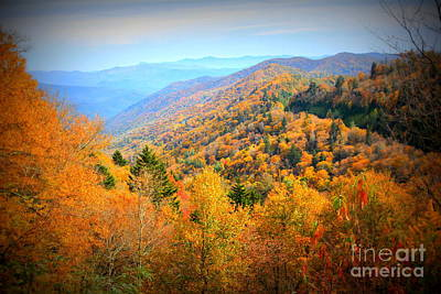 Photograph - Colors Of The Smokies by Cynthia Mask