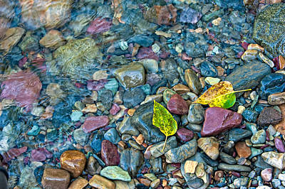 Photograph - Colors Of The Stream by Joan Herwig