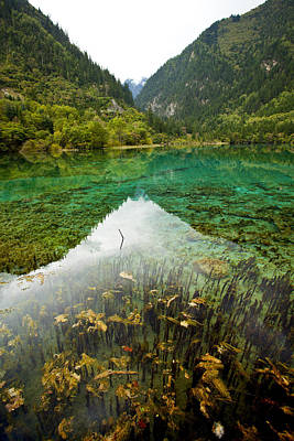 Photograph - Colors Of Tibet Jiuzhaigou by Sundeep Bhardwaj Kullu sundeepkulluDOTcom