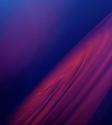 Photograph - Colour Abstract Liquid by Jonathan Knowles