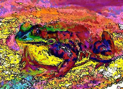 Colour Frog 2 Art Print