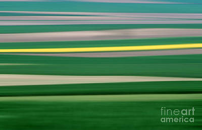In A Row Photograph - Colourful Landscape by Bernard Jaubert