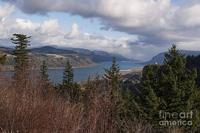 Columbia Gorge Art Print by Belinda Greb