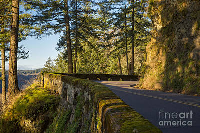 Photograph - Columbia River Gorge Highway by Brian Jannsen