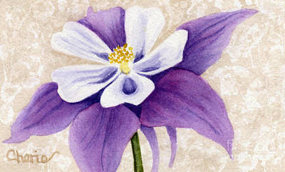 Columbine In Violet Art Print by Vikki Wicks