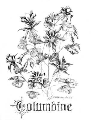 Columbine Flower Drawings
