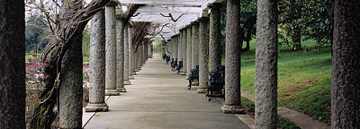 In A Row Photograph - Columns Along A Path In A Garden by Panoramic Images
