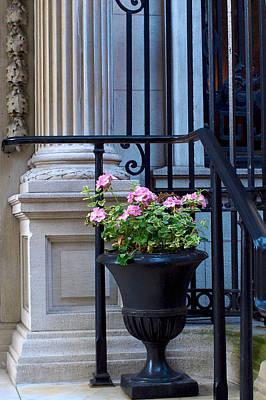 Photograph - Columns And Geraniums by Cornelis Verwaal