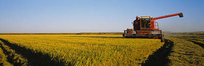 Combine In A Rice Field, Glenn County Print by Panoramic Images