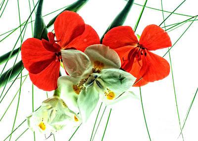 Combo Bouquet Art Print
