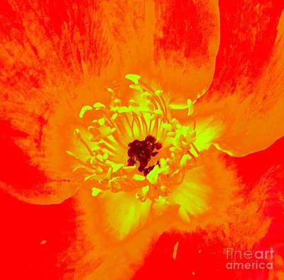 Come Closer Rose Art Print by Ann Johndro-Collins