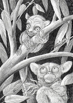Drawing - Come Here My Baby Tarsier by June Walker