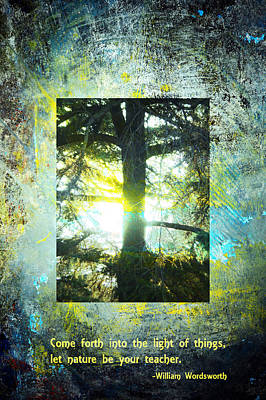 Come Into The Light With Nature Art Print by John Fish