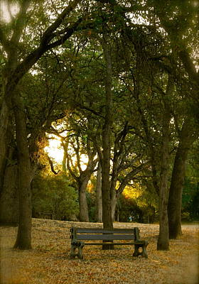 Photograph - Come Sit Awhile by Michele Myers