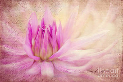 Come Spring Print by Beve Brown-Clark Photography