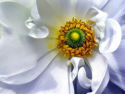 Ethereal - Come To The Center by Beth Akerman